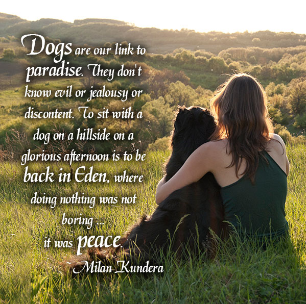 Inspirational - Dogs are our link to Paradise